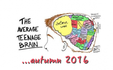 The-average-teenager-brain_autumn2016