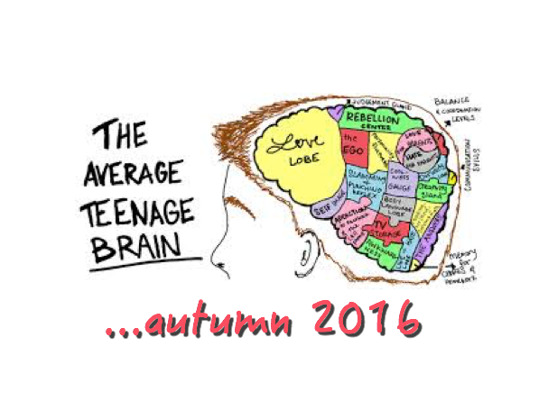 The-average-teenager-brain_autumn2016