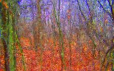 autumn-woods-painting