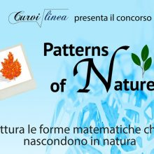 PATTERNS OF NATURE: un concorso tra matematica e natura (entro il 31/10/2017)