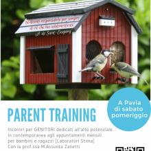 Parent Training 2 - locandina